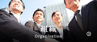 組織 Organization